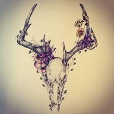 les 104 meilleures images du tableau u003c deer u003e sur pinterest