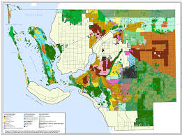 Florida Wetlands Map by Planning