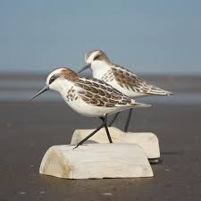 stint bird wooden carving running carved birds buy