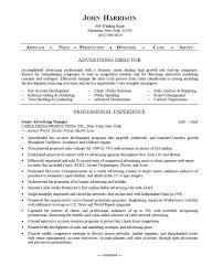 resume sles for advertising account executive description director resume