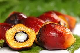 Minyak Cpo harga cpo 9 juli konsumsi india dorong harga minyak sawit market