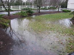 Water Ponding In Backyard Good Yard Drainage Can Prevent A Wet Basement In Chicago