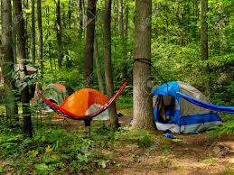 a small grouping of tents and a hammock slung between two trees