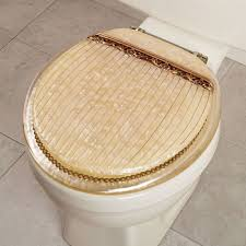 bedroom furniture designer fancy toilet seats roma toilet seat