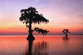 Louisiana landscapes images Free materials teaching louisiana history plus history in jpg