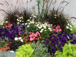 Container Flower Gardening Ideas Container Flower Gardening In Florida Ideas Home Inspirations