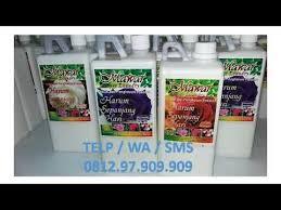 Pewangi Laundry Jogja terlaris 0812 97 909 909 harga pewangi laundry semarang parfum