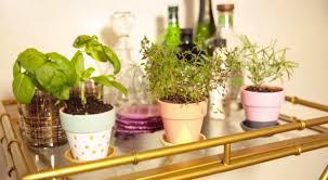 Herb Shelf Diy Bar Cart Herb Garden The Accent