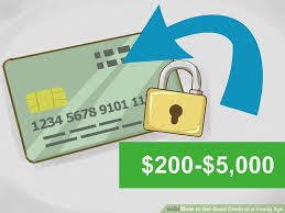 How To Get Free Credit Score Without Signing Up by How To Get Good Credit At A Young Age 15 Steps With Pictures