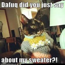 Dafuq Is This Meme - dafuq did you just say about my sweater lolcats lol cat