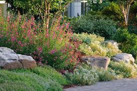 pictures of a garden create a rock garden tips for success hgtv