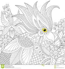 exotic zentangle cockatoo parrot for anti stress coloring