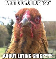Chicken Memes - what did you just say about eating chickens meme rage chicken