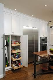 Rustic Modern Kitchen Cabinets 153 Best 2017 Kitchen Dining Remodel Images On Pinterest Kitchen