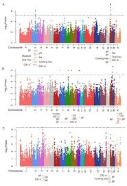 Qtl Mapping Genome Wide Association Study Of Integrated Meat Quality Related