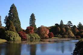 thomas houghton gardens sheffield park gardens a beautiful