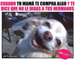 Memes Mama - momentos que haz vivido con tu mam罍 18 png 960纓777 chistes