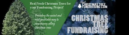 christmas tree fundraising for schools churches sports clubs non