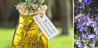 comment utiliser le romarin en cuisine huile au romarin jardin des gourmandsjardin des gourmands