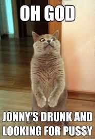 Drunk Cat Meme - oh god jonny s drunk cat meme cat planet cat planet