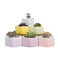 mkono white ceramic succulent hanging planter with 3 plant pots ebay