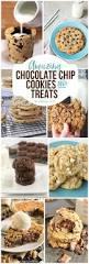 chocolate chip cookies recipes landeelu com