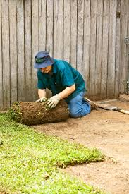 don u0027s tips laying new turf burke u0027s backyard