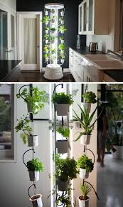Gardening For Beginners Vegetables by 5 Vertical Vegetable Garden Ideas For Beginners Contemporist