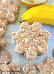 peanut butter oatmeal banana dog treats recipe doggie treats