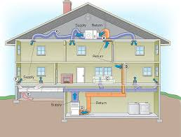 Cost Of Adding Basement To Existing House by Basement Mold Removal Safe Mold Solutions Chapter 2