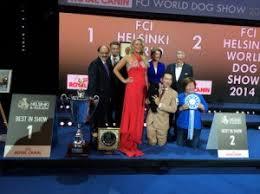 yarrow affenpinscher the affenpinscher is the winner of the 2014 world dog show
