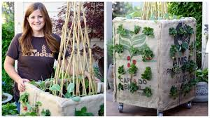 Verticle Gardening by Diy Grow Box Vertical Gardening Youtube