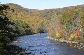Massachusetts landscapes images Autumn landscapes near harvard forest harvard forest jpg