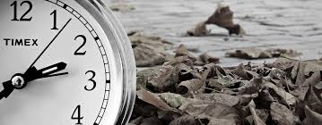 time free pictures on pixabay