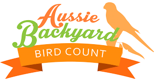 countdown to the 2017 aussie backyard bird count birds in backyards
