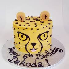 Cheetah Party Decorations Best 25 Cheetah Birthday Parties Ideas On Pinterest Leopard