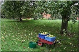 small scale farming micro farms for sustainable farming self