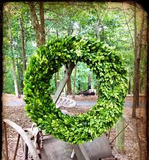 artificial boxwood wreath exterior lovely circle artificial boxwood wreath