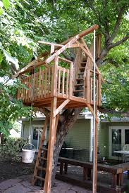 treecraft design build walnut
