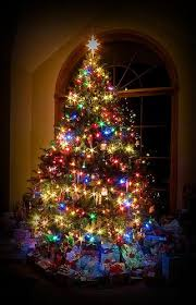 christmas trees with colored lights decorating ideas christmas tree lighting ideas tomato cage christmas tree lights