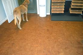 best flooring for dogs and cats