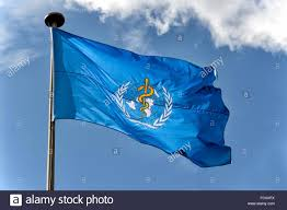 flag of the world health organization who flag world health organization stock photos who flag world