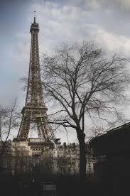 Beautiful Eiffel Tower by 594 Best Eiffel Tower Images On Pinterest Places Cities And