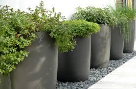 Cheap Tall Planters by Cheap Garden Planters Home Design Ideas