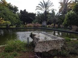 Miami Beach Botanical Garden by Mb Botanical Garden Picture Of Miami Beach Botanical Garden