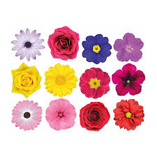 flower stickers images reverse search