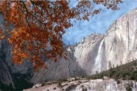 spot fall colors sierra yosemite