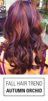 colour in hair 2015 best 25 fall hair colors 2015 ideas on pinterest dark hair with