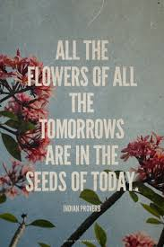 flowers today all the flowers of all the tomorrows are in the seeds of today