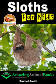 animal books all about sloths a introduction to sloths